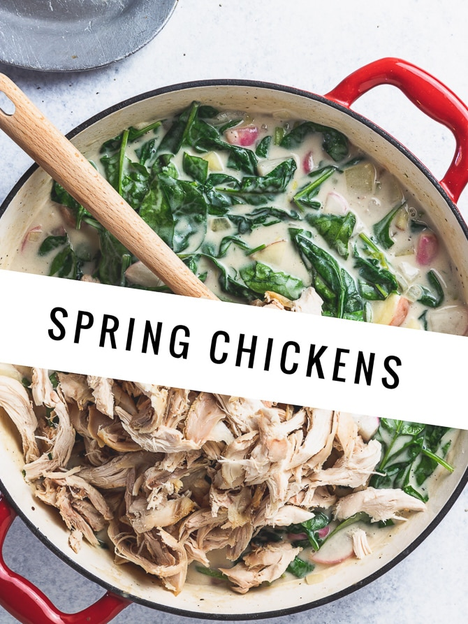 Spring Chicken and Biscuits