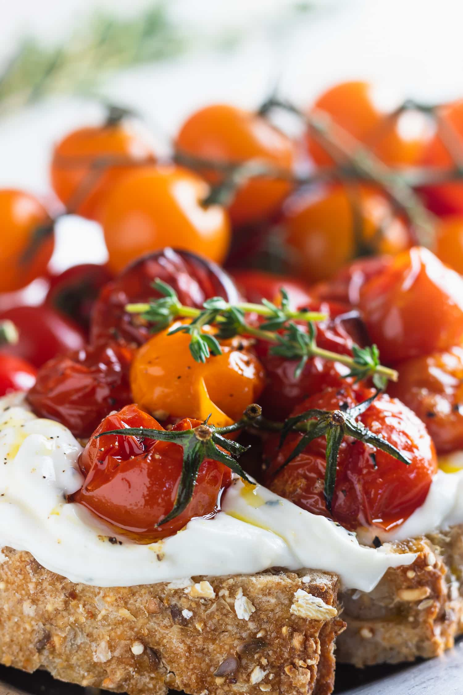 roasted tomato confit on whipped ricotta
